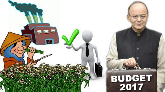 रोजगार, कृषि, उत्पाद, मनरेगा और निवेश पर भी बजट में जोर