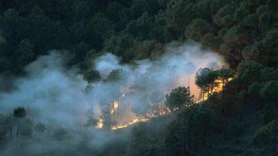 सैटेलाइट के जरिए मिलेगी जंगलों में आग लगने की जानकारी