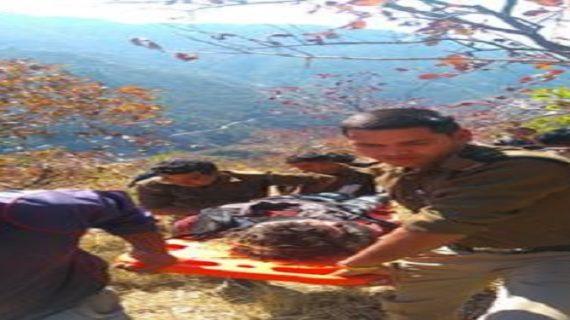 खाई में गिरी बोलेरो, 8 लोगों की हुई मौत