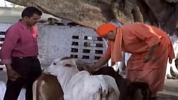…तो इस कारण सीएम योगी नहीं जाएंगे राम की नगरी 'अयोध्या'