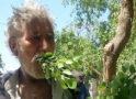 मिलिए पाकिस्तान के इस 'पत्तीमैन' से, जो रोजाना खाता है सिर्फ पत्तियां