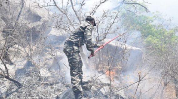 चौथे दिन भी माउंट आबू के जंगलो में सुलग रही है आग