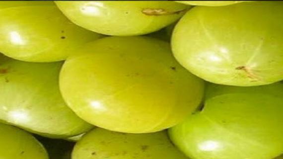 करे आंवले का सेवन दूर होगी यूरीन की समस्या