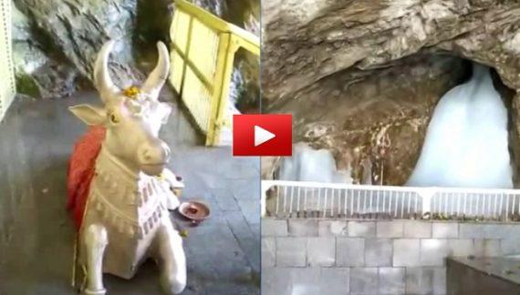 बाबा बर्फानी के शिवलिंग का आकार पहले से बड़ा, वीडियो हुआ वायरल