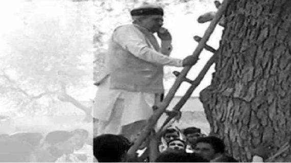 डिजिटल इंडिया की खुली पोल, सिग्नल न मिलने पर पेड़ पर चढ़े बीजेपी मंत्री