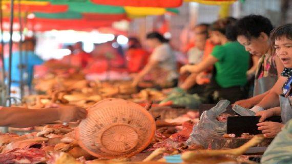 चीन में शौक से खाया जा रहा कुत्तों का मांस, मना रहे त्यौहार