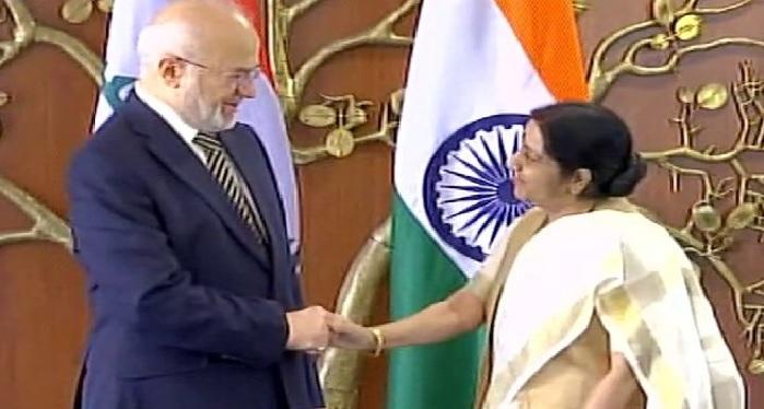 Sushma Swaraj, meet, Iraq, Foreign Minister, Mosul