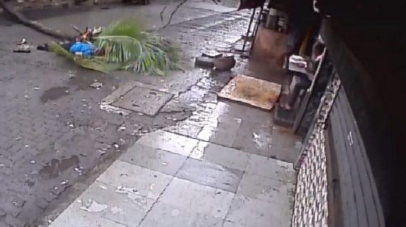 देखें एंकर की मौत का वीडियो, कैसे नारियल के पेड़ ने ली जान