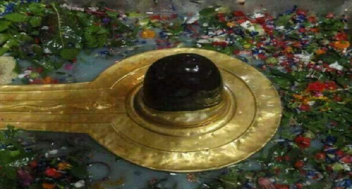 devotees, performed, baba, lord shiva, jalabhishek
