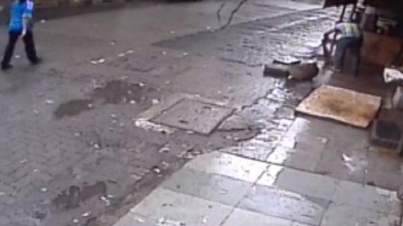 मुबंई में अचानक पेड़ गिरने से हुई महिला की मौत