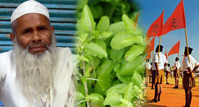 rss, tulsi, plant, kuran, mention, home, Muslim, Indresh Kumar
