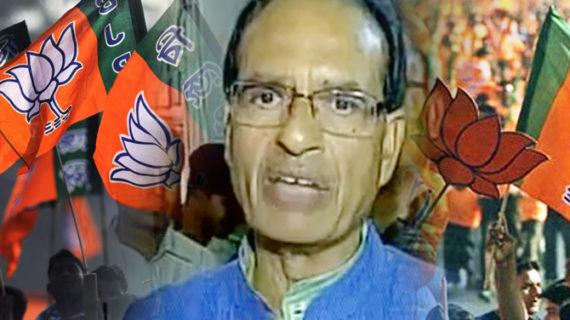 MP- निकाय चुनाव के लिए मतगणना जारी, 43 में से 26 पर बीजेपी का बोला डंका