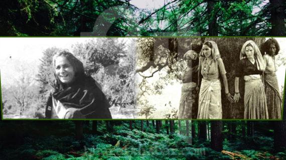 जाने चिपको आंदोलन में खास भूमिका निभाने वाली बचनी देवी के बारे में