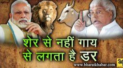 मोदी सरकार में शेर से नहीं गाय से डरते हैं लोग : लालू प्रसाद