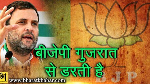 राहुल ने किया गुजरात में जीत का दावा, कहा-बीजेपी मुझसे नहीं गुजरात से डरती है