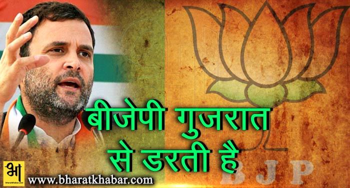 rahul 6 राहुल ने किया गुजरात में जीत का दावा, कहा-बीजेपी मुझसे नहीं गुजरात से डरती है