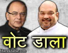 गुजरात चुनाव: अमित शाह और अरुण जेटली ने डाला वोट